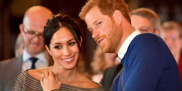 A family insider tells Fox News Meghan should have warned her family about media attention before her relationship with Prince Harry was made public.