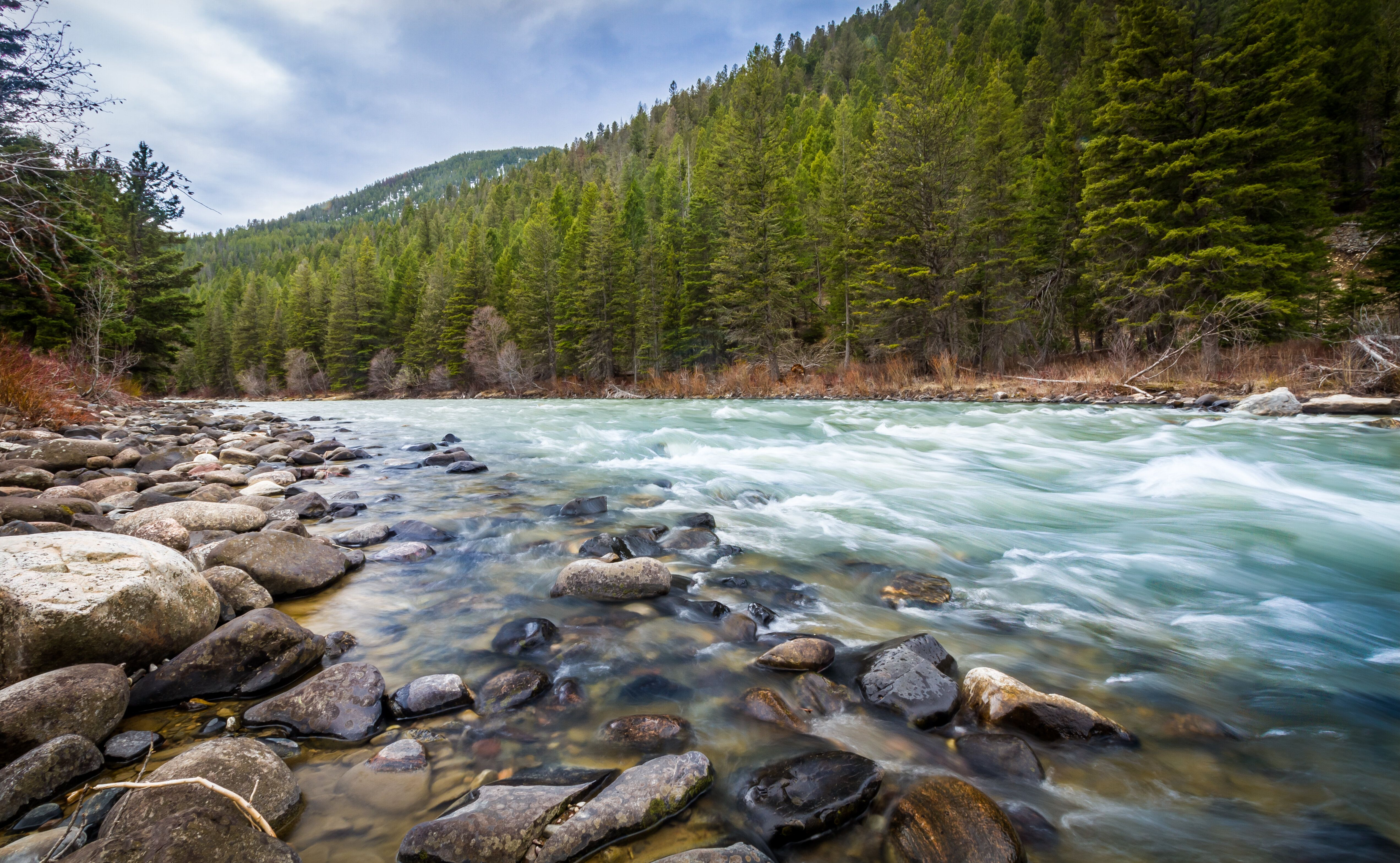 The 120-mile-long Gallatin River is one of three rivers that converge near Three Forks, Montana, to form the Missouri River.