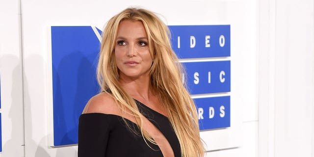 Allegations of battery did not phase Britney Spears, who took to Instagram to share topless photos just hours after news of an investigation broke.