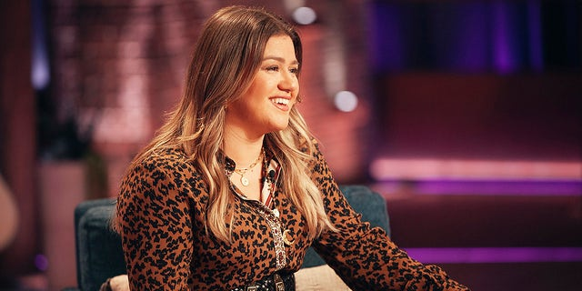 Kelly Clarkson has seemingly been enjoying single life after filing for divorce from her husband Brandon Blackstock. The musician recently attended a Blake Shelton concert where she and her friends were living their 'best lives.'