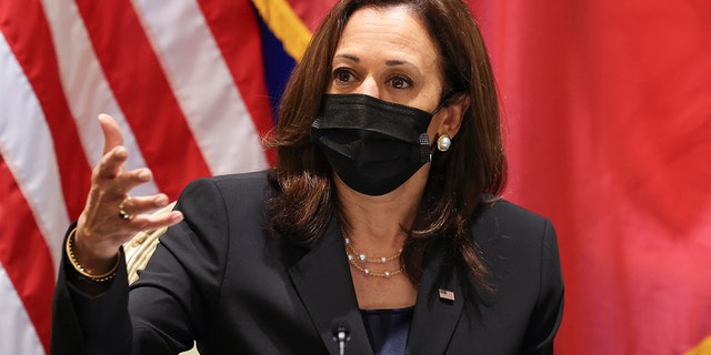 U.S. Vice President Kamala Harris meets with civil society change makers who work on LGBT, transgender, and disability rights and climate change, at the U.S. Chief of Mission's residence in Hanoi, Vietnam, Thursday, Aug. 26, 2021. (Associated Press)