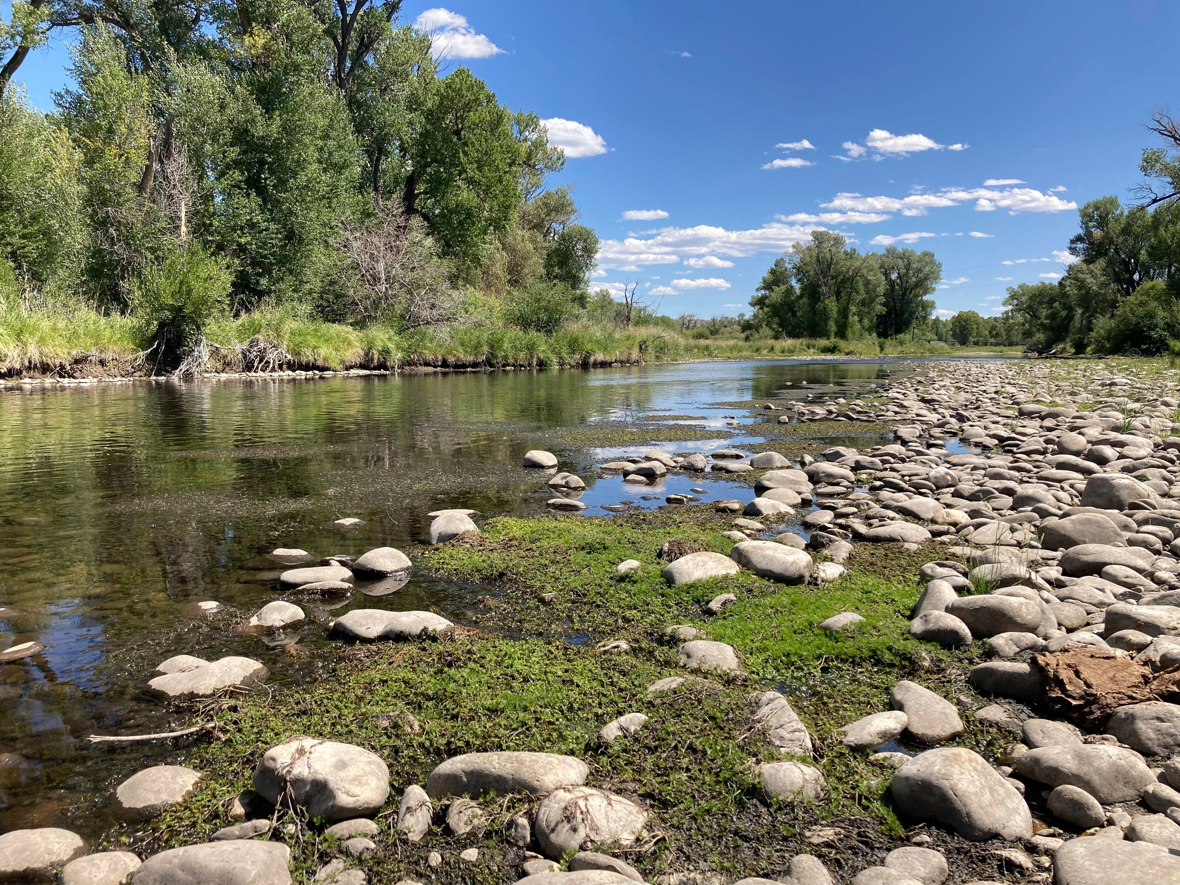 Exposed rocks and aquatic plants are seen alongside the North Platte River at Treasure Island in southern Wyoming, on Tuesday